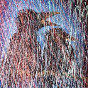 deux corbeaux jacassent sous la pluie - à trop parler, personne n'écoute - dripping - gilbert bellefeuille