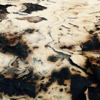 abstraction, photo, zébrures crème gris-bleu, noires, mouvement de ague, Hélène Paré