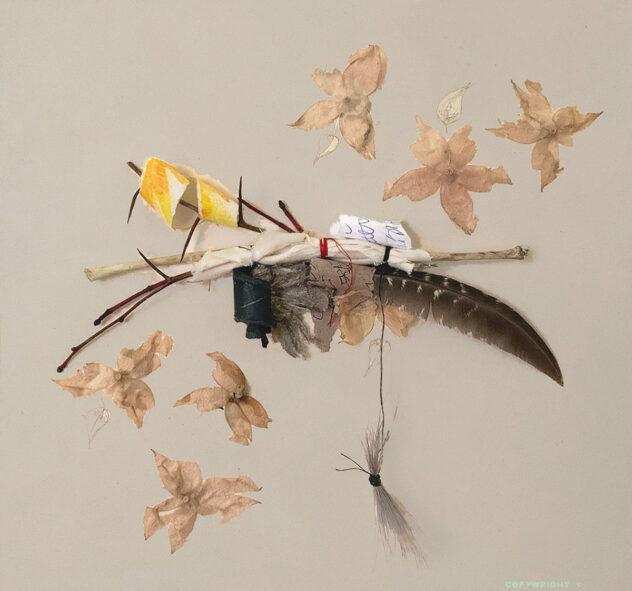 collage d'objets divers, plumes, papier, ramau d'aubépine, enveloppes de cerise de terre Sylvie Brodeur