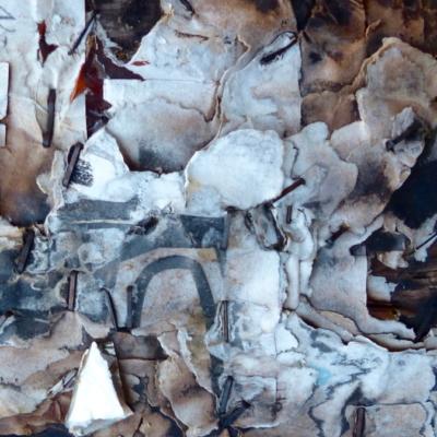 collage-photos, silhouette de hibou parmi fragments de papier-Hélène Paré