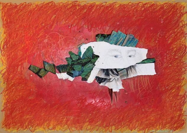 abstraction, pastels gras, graphite sur papier , plumes, Sylvie Brodeur